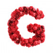 Red roses letter G, isolated on white background — Stock Photo #45850825