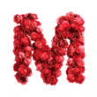 Red roses letter M, isolated on white background — Stock Photo #45850841
