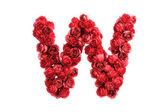 Red roses letter W, isolated on white background — Stock Photo