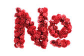 Red roses symbol isolated on white background — Stock Photo