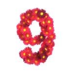 Red flower symbol 9 isolated on white backround — Stock Photo #45863123