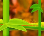 Orange Nature Abstract Background — Stock Photo