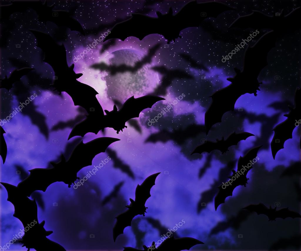 Bats Halloween Night Background — Stock Photo #12768577