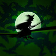 Witch Halloween Green Background — Stock Photo
