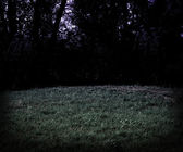 Scary Meadow at Night Halloween Background — Stock Photo