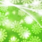 Green Winter Bokeh Background — Stock Photo