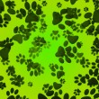 Dog Paws Green Background — Stock Photo