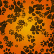 Stock Photo: Dog Paws Orange Background
