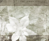 Beautiful Wedding Retro Background — Stock Photo