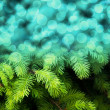 Christmas Fir Blue Abstract Background — Stock Photo