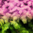Christmas Fir Pink Abstract Background — Stock Photo