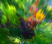 Green Garden Abstract Background — Stock Photo