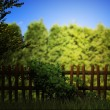 Old Wooden Fence Green Background - Stock Photo