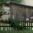 Old Wooden Fence Village Background - Stock Photo