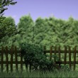 Old Wooden Fence Nature Background - Stock Photo