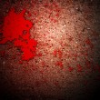 Thriller Blood on Grunge Wall — Stock Photo #24858023