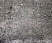 Gray Concrete Texture — Stock Photo