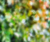 Green Bokeh Background — 图库照片