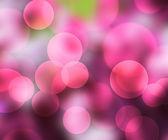 Pink Bokeh Backdrop — Stock Photo