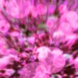 Stock Photo: Pink Bokeh Background