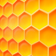 Honey Texture — Stock Photo #30859033