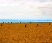 Beach Backdrop — Stock Photo