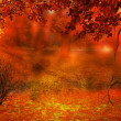 Autumn Background — Stock Photo #33568587