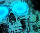 Skull Halloween — Stock Photo