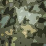 Olive Camouflage Backdrop — Stock Photo #35468735