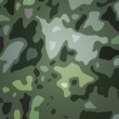 Green Camouflage Backdrop — Stock Photo #35468811