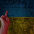 Stockfoto: Anti Ukraine Revolution
