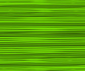 Green Random Lines — Stock Photo