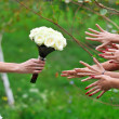 Bride gives a bouquet of her friends — Stock Photo