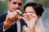 Bride and groom holding hands in a ring — Stock Photo