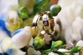 Two Golden Wedding Rings on flowers macro shot — Stock Photo