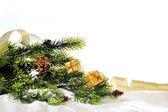 Zweig der weihnachtsbaum auf einem weißen hintergrund mit spielzeug und gif — Stockfoto