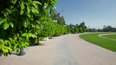 Landscaped Formal Garden. Park — Vídeo de Stock