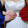 Close-up of bride's and groom's hands showing wedding rings. — Stock Photo