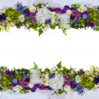 Beautiful frame for a card from natural flowers. Isolated — Stock Photo #48988261