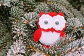 Christmas owl on a snowy tree in winter — Stock Photo