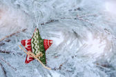 Christmas star on a snowy tree — Stock Photo