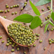 Mung beans over wooden spoon — Stock Photo