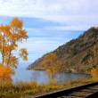 Постер, плакат: Cirum Baikal Railway along Lake Baikal Russia Part of the Historic Trans Siberian Railroad