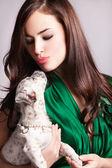 Domácí mazlíček — Stock fotografie