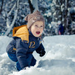 Stock Photo: Little boy in snowdrift