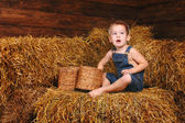 干し草に座っている少年 — ストック写真