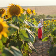 A Ukrainian boy in sunflowers — Stock Photo