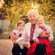 Grandparents with grandchildren in Ukrainian costume at sunset — Stock Photo #23241996