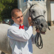 Portrait of the groom with a horse — Stock Photo