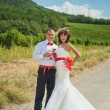 Bride and groom on the background of vineyards — Stock Photo